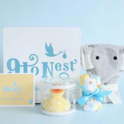 9 to nest pregnancy box